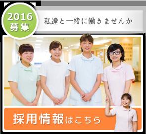 2016年 採用情報