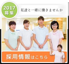 2017年 採用情報